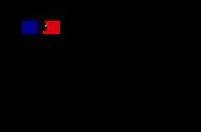 Logo DINUM